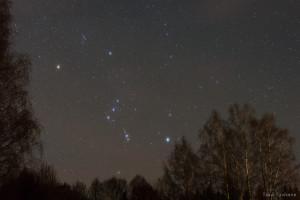 Orion astub mööda puulatvu, mõõk vööl